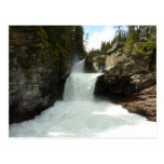 St. Mary Falls at Glacier National Park Postcard
