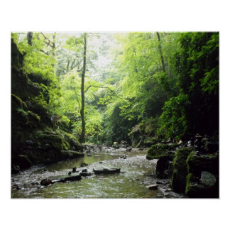 St Nectan's Glen Cornwall Photograph Posters
