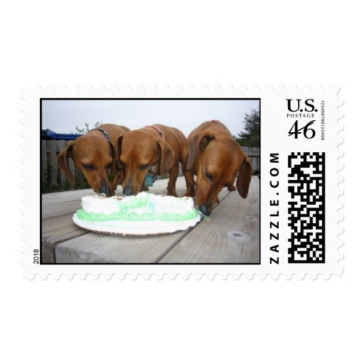 St. Paddy's Day Birthday Postage Stamps