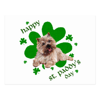 St Paddys Day Cairn Terrier Postcard