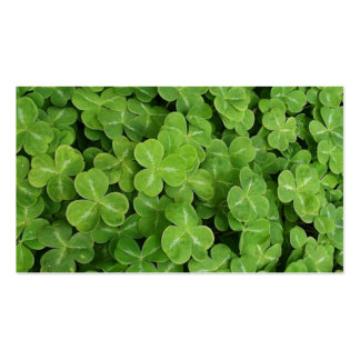 St. Patrick Day - Shamrocks Double-Sided Standard Business Cards (Pack Of 100)