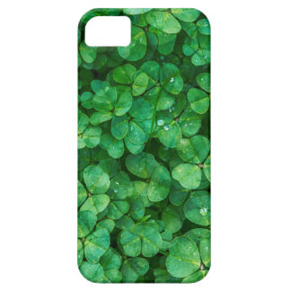 St Patrick lucky clovers iPhone SE/5/5s Case