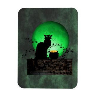 St. Patrick's Chat Noir Magnet