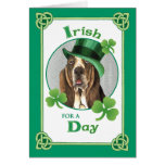 St. Patrick's Day Basset Greeting Cards