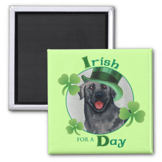 St. Patrick's Day Black Lab Magnet