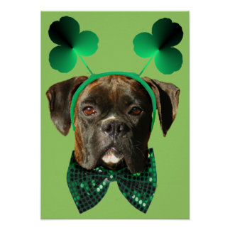 St. Patrick's Day Boxer poster