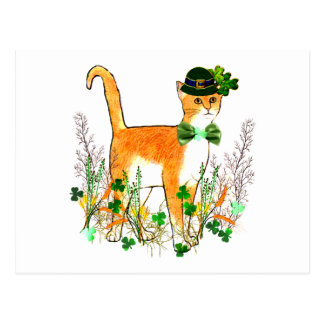 St. Patrick's Day Cat Postcard