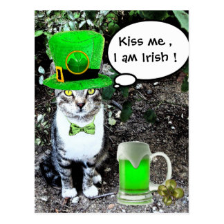 ST PATRICK'S DAY CAT WITH GREEN IRISH BEER POSTCARD