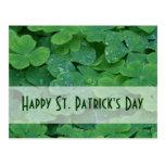 St. Patricks Day Collection Postcard