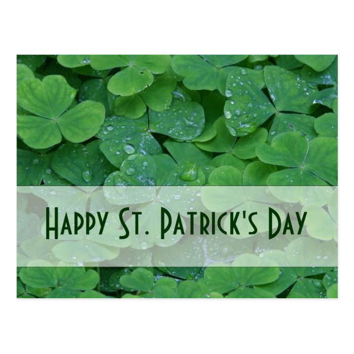 St. Patricks Day Collection Postcard