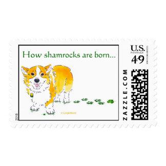 St Patrick's Day Corgi Stamp: Medium Stamp