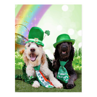 St Patricks Day - GoldenDoodles - Sadie and Izzie Postcard