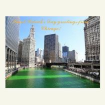St Patrick's Day greetings from Chicago post card