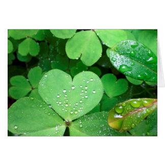 St Patrick's Day Heart Leaves Photo Card