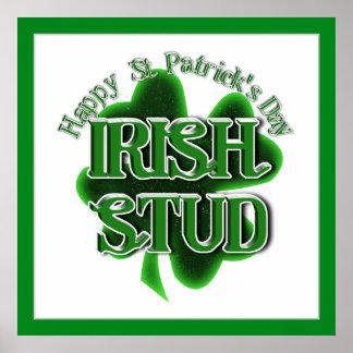 St Patrick's Day  - Irish Stud Posters