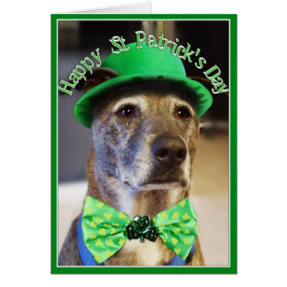 St Patrick's Day Lucky Dog Greeting Cards