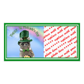 St Patrick's Day Lucky Raccoon (Scene) Photo Greeting Card