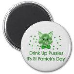 St Patrick's Day Scrapper Cat Refrigerator Magnet