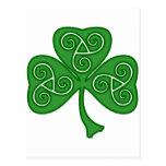 St Patrick's day shamrock with threefold decor Postcard