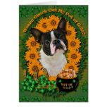 St Patricks - mina de oro - Boston Terrier Tarjeta De Felicitación