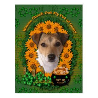 St Patricks - mina de oro - Jack Russell Tarjetas Postales