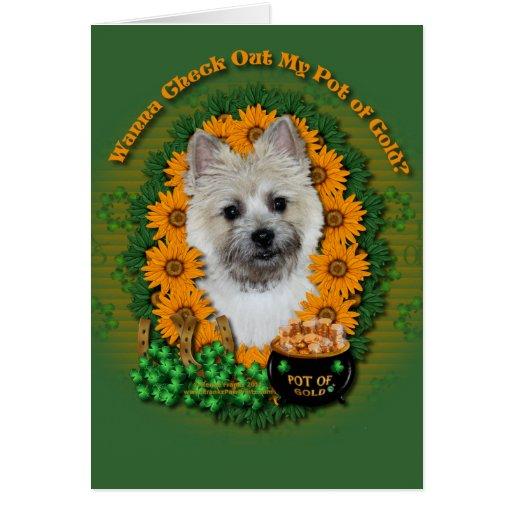 St Patricks - mina de oro - mojón Terrier TeddyBea Felicitación