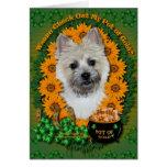 St Patricks - mina de oro - mojón Terrier TeddyBea Felicitacion