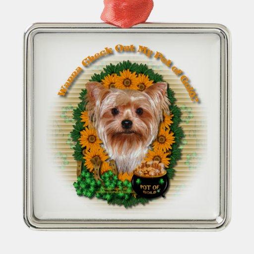 St Patricks - mina de oro - Yorkshire Terrier Ornamento Para Reyes Magos