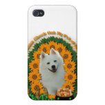 St Patricks - Pot of Gold - American Eskimo iPhone 4 Cover