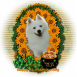 St Patricks - Pot of Gold - American Eskimo Photo Sculptures