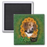 St Patricks - Pot of Gold - Beagle 2 Inch Square Magnet