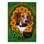 St Patricks - Pot of Gold - Beagle Cards