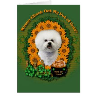 St Patricks - Pot of Gold - Bichon Frise Card