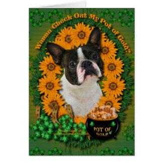 St Patricks - Pot of Gold - Boston Terrier Card
