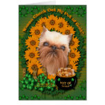 St Patricks - Pot of Gold - Brussels Griffon Greeting Cards