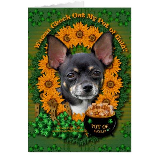 St Patricks - Pot of Gold - Chihuahua - Isabella Card