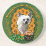 St Patricks - Pot of Gold - Chinese Crested -Kahlo Drink Coasters