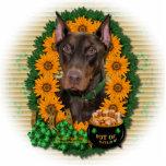 St Patricks - Pot of Gold - Doberman - Red - Rocky Photo Cut Out