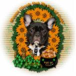 St Patricks - Pot of Gold - French Bulldog - Teal Photo Cutouts
