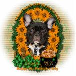 St Patricks - Pot of Gold - French Bulldog - Teal Photo Cut Out