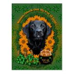 St Patricks - Pot of Gold - Labrador - Black -Gage Postcards