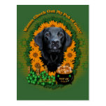 St Patricks - Pot of Gold - Labrador - Black -Gage Post Card