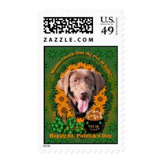 St Patricks - Pot of Gold - Labrador - Chocolate Postage Stamps
