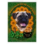 St Patricks - Pot of Gold - Pug Greeting Cards