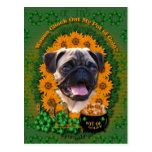 St Patricks - Pot of Gold - Pug Postcard