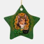 St Patricks - Pot of Gold - Sheltie - Cooper Double-Sided Star Ceramic Christmas Ornament