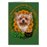 St Patricks - Pot of Gold - Yorkshire Terrier Greeting Card