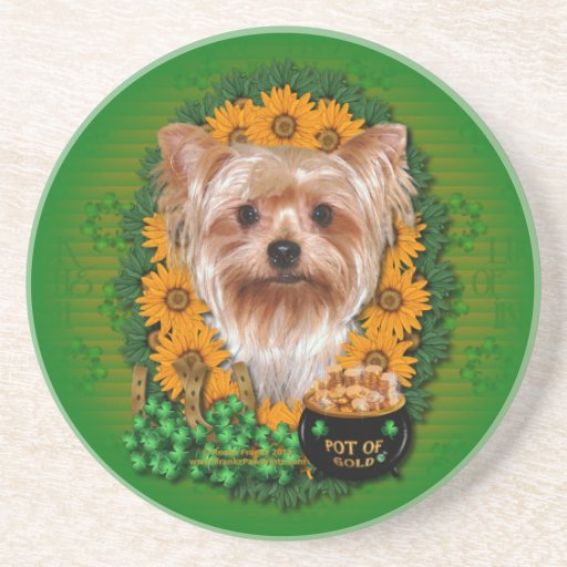 St Patricks - Pot of Gold - Yorkshire Terrier Drink Coasters