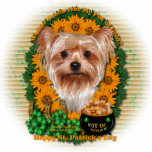 St Patricks - Pot of Gold - Yorkshire Terrier Photo Cutouts