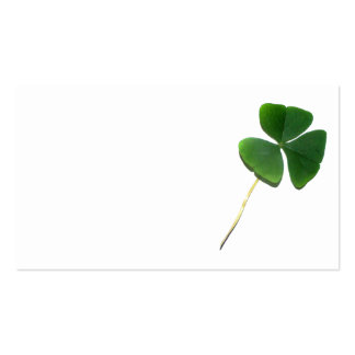 St. Patrick's Shamrock Double-Sided Standard Business Cards (Pack Of 100)